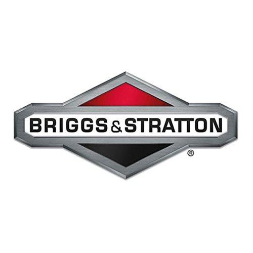 Conjunto De Cilindro Stratton 592890 & Briggs & 592890 b86e39