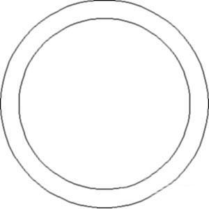 O-Ring 14453081