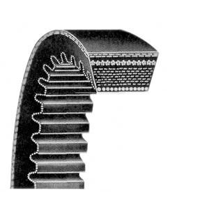 Belt Alternator 259289A1