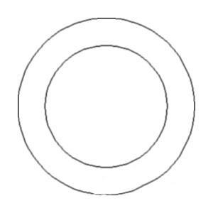 O-Ring 49886