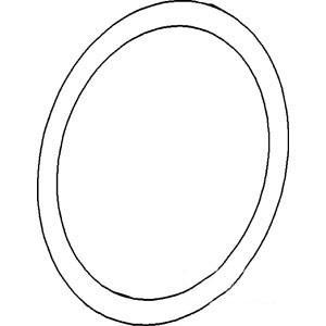 O-Ring A3606R