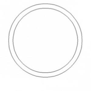 O-Ring A42666